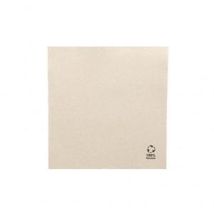 GUARDANAPO TISSUE DOUBLE POINT 33X33 PACK 1200UN